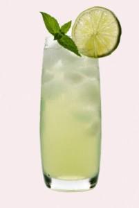 Gin Fizz*