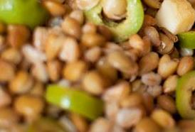 Insalata fredda di farro e avocado*